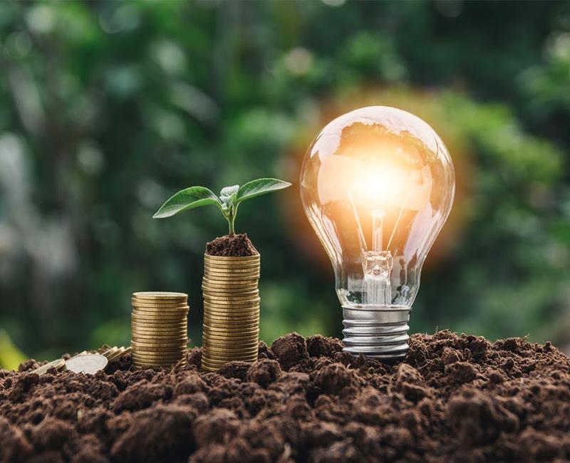 Optimiser la consommation énergétique de son entreprise grâce à l'énergie verte